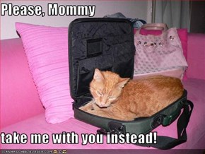 Please, Mommy  take me with you instead!