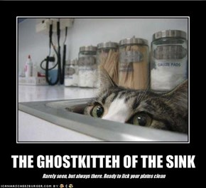 THE GHOSTKITTEH OF THE SINK