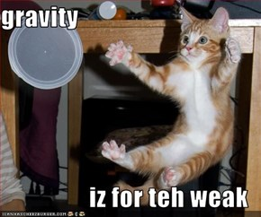 gravity  iz for teh weak