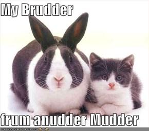 My Brudder  frum anudder Mudder