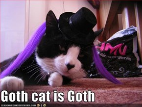 Goth cat is Goth