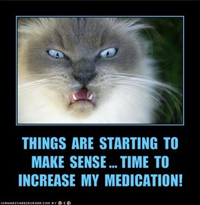THINGS  ARE  STARTING  TO MAKE  SENSE ... TIME  TO INCREASE  MY  MEDICATION!