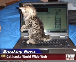 Breaking News - Cat hacks World Wide Web