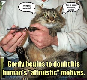 "Gordy begins to doubt his human's ""altruistic"" motives."