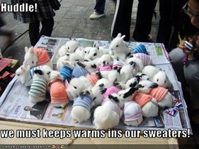 Huddle!  we must keeps warms ins our sweaters!