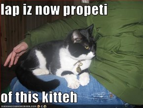 lap iz now propeti  of this kitteh