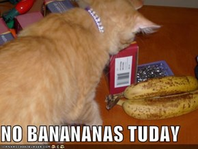 NO BANANANAS TUDAY