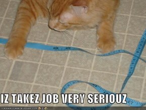 IZ TAKEZ JOB VERY SERIOUZ