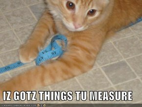 IZ GOTZ THINGS TU MEASURE
