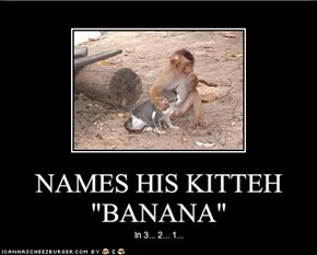"NAMES HIS KITTEH ""BANANA"""
