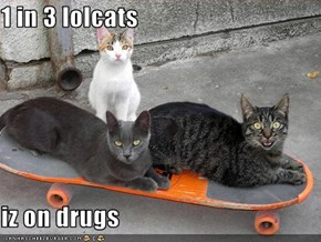 1 in 3 lolcats  iz on drugs