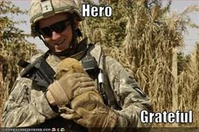 Hero  Grateful