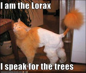 I am the Lorax  I speak for the trees