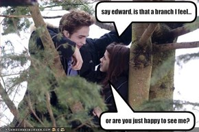 say edward, is that a branch I feel...