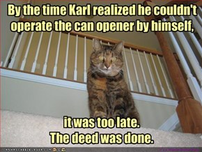 kitty should have thought that through a little more