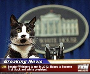 Breaking News - Senator Whiskers to run in 2012; Hopes to become first black and white president.