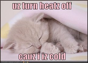 uz turn heatz off  cauz i iz cold