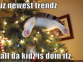 iz newest trendz  all da kidz is doin itz