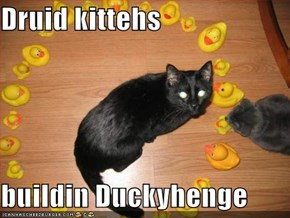 Druid kittehs  buildin Duckyhenge