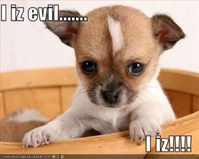 I iz evil.......  I iz!!!!