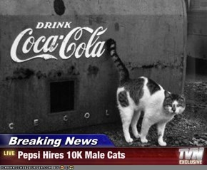 Breaking News - Pepsi Hires 10K Male Cats
