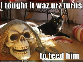 I tought it waz urz turns  to feed him