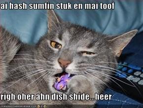 ai hash sumfin stuk en mai toof  righ oher ahn dish shide...heer