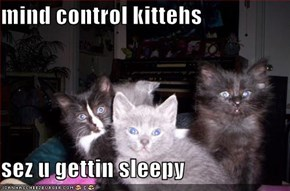 mind control kittehs  sez u gettin sleepy