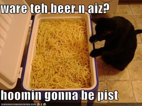 ware teh beer n aiz?  hoomin gonna be pist
