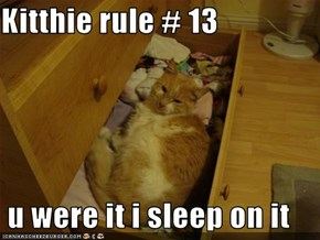 Kitthie rule # 13   u were it i sleep on it