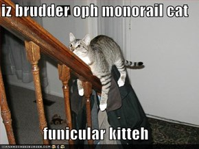 iz brudder oph monorail cat  funicular kitteh