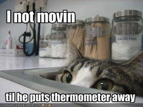 I not movin