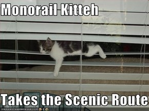 Monorail Kitteh  Takes the Scenic Route