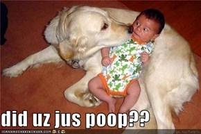 did uz jus poop??