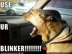 USE UR BLINKER!!!!!!!!