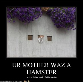 UR MOTHER WAZ A HAMSTER