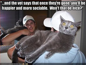 """...and the vet says that once they're gone, you'll be
