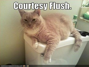 Courtesy Flush.