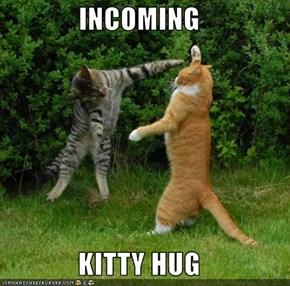 INCOMING  KITTY HUG