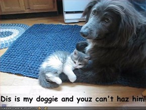 Dis is my doggie and youz can't haz him!