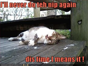I'll never do teh nip again  dis time I means it !