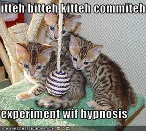 itteh bitteh kitteh commiteh  experiment wif hypnosis