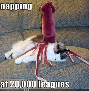 napping  at 20,000 leagues
