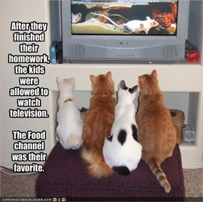 After they finished their homework, the kids were allowed to watch television.  The Food channel was their favorite.