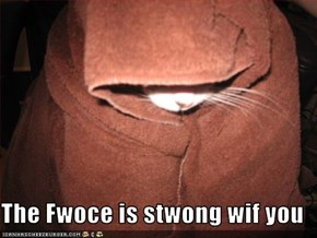The Fwoce is stwong wif you