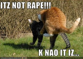 ITZ NOT RAPE!!!  K NAO IT IZ...