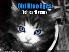 Old Bloo Eyes