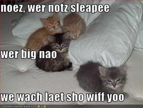 noez, wer notz sleapee wer big nao we wach laet sho wiff yoo