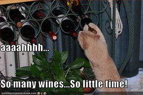 aaaahhhh... So many wines...So little time!