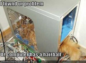 I fownd ur problem  Ur computer has a hairball